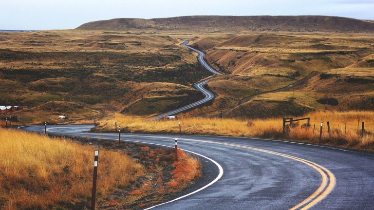 Winding Startup Path to Success